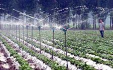 <b>河北省抢抓京津冀协同发展机遇 大力实施农业品牌创建提升行动</b>