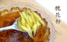 广西钦州灵山著名特产:槐花蛆