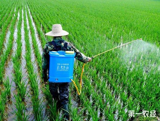 农资市场农药价格持续升温的背后