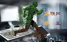 """以""""互联网+""""农业推进乡村振兴"""