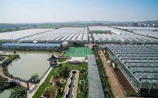 <b>大力发展多功能大循环农业 推动乡村振兴</b>