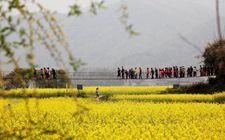 江西南昌出台多项优惠政策 大力发展生态农业