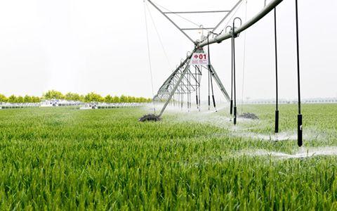 柯炳生:农业农村在新时期下有哪些新的发展?