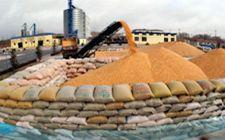 <b>内蒙古粮食产量已连续5年稳定在550亿斤以上</b>