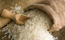 """稻米产业出现一系列""""产业病"""" 优质稻品种退化""""掺混""""现象普遍"""