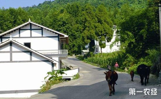 2018农村旧房改造政策:不满足条件或被强制拆迁!