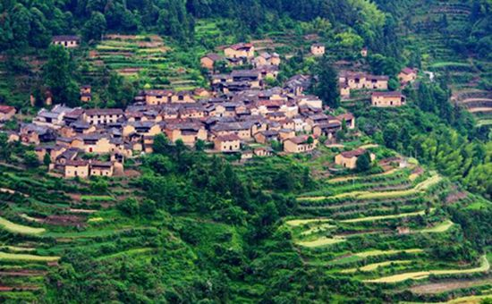 <b>浙江丽水:坚持农业农村优先发展 倾力打造美丽乡村</b>