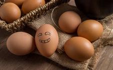 2017年12月15日全国各地区最新鸡蛋价格走势分析