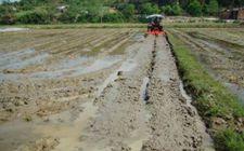 湖北省开展冷浸田改良培肥治理 成效显著