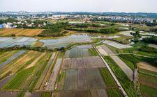 农业部于日前召开耕地轮作休耕制度试点推进落实会