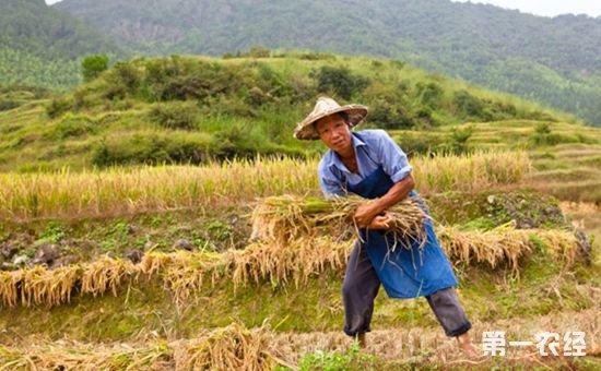 江西万年县:为失地农民谋出路 确保失地农民生活有保障