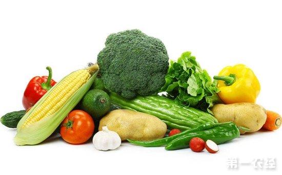 广东汕头:农副产品市场蔬菜价格整体上涨