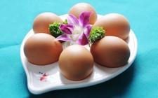 山东:鸡蛋价格走势持续回升 市场蛋价同比涨幅32.21%