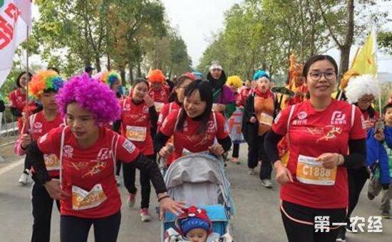 2017肇马·德庆乡村马拉松于12月17日正式开跑