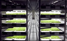 <b>农业数字化,未来能否像工业一样精准?</b>
