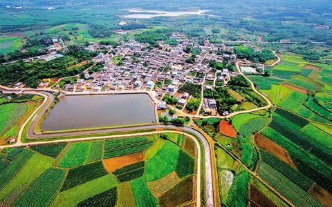 海南全力推进美丽乡村建设 推进休闲农业和乡村旅游业发展