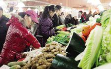 天津市气温持续下降 致使蔬菜价格不断上涨