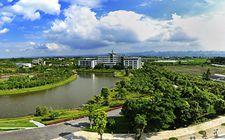 广西推进农业科技园区建设 目前已经建成5家国家农业科技园区