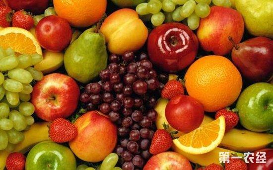山西太原水果市场价格行情分析