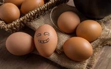 2017年12月21日全国各地区最新鸡蛋价格走势分析