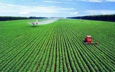 <b>40个农业绿色发展试点先行区确定</b>