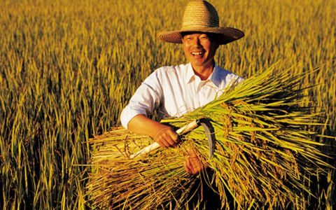 农村集体产权制度改革意见将给农民带来什么影响?