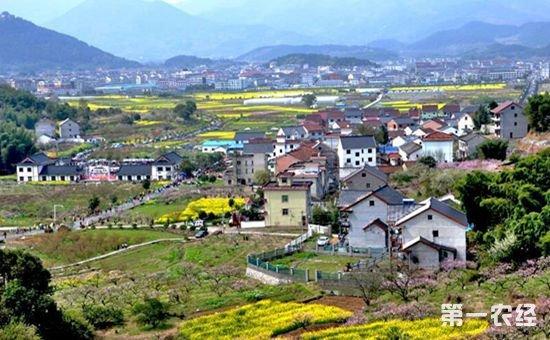 专家解读中央经济会议:科学制定乡村振兴战略规划