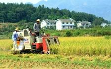 """<b>发展新农业培养新农民 多给""""新农民""""搭把手</b>"""