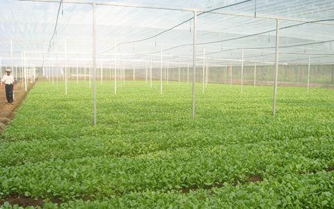 国务院发布《关于探索建立涉农资金统筹整合长效机制的意见》