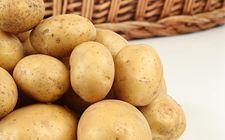 宁夏在马铃薯主食产品研发方面取得显著成效