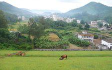 十八大以来山西省贫困地区农村居民四大项收入全面增加