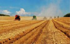 黑龙江粮食生产继续保持全国第一