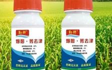 农药企业烟嘧莠去津除草剂行情报价