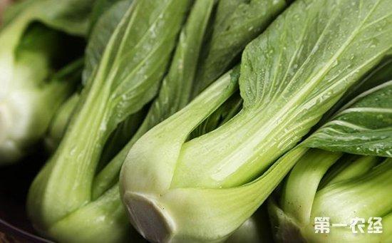 食药监总局曝光12批次不合格食品  其中6批次为食用农产品