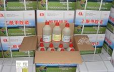 几种乙酰甲胺磷杀虫剂市场报价