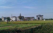 <b>江苏省推出一系列举措促进农业增效、农民增收、农村增绿</b>