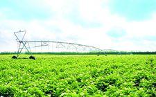 """党的十八大以来我国农业农村经济稳中向好 """"三农""""得到有效发展"""