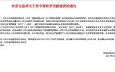贾跃亭174天被点名三次 年底前不回国将被罚