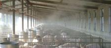 养猪场的温度、湿度和环境pH值对消毒影响