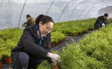 江苏宿迁:积极引导农民从普通种植向智能化种植转变