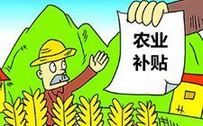 2018年重大农业项目补贴申报 都有哪些农业项目呢?