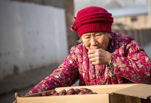 河南女汉子新疆种枣大量滞销 婆婆愁哭盼好心人来购