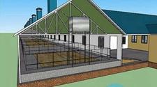 猪场改扩建需根据猪场整体情况来进行