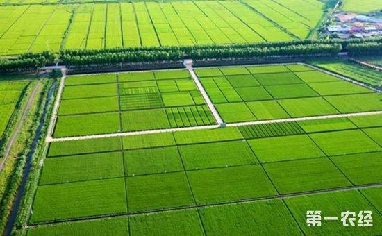 高标准农田补贴:补贴金额高、领取门槛低