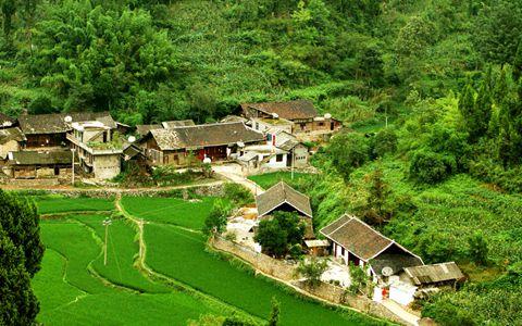 农业和农村改革发展热潮不断涌动 乡村振兴正当时