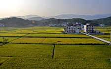 中国农业经济学会2017年年会在浙江省杭州市召开