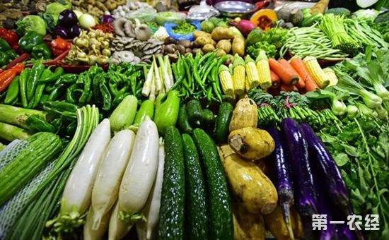 12月份哈尔滨蔬菜价格呈现规律性、季节性稳步上涨走势