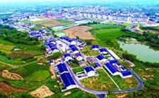 <b>武汉力争到2020年实现涉农电商交易额破两千亿元</b>