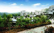 四川:幸福美丽新村一万多个 全面实施产业提升行动