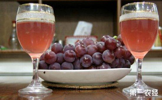 如何自制葡萄酒?家庭自制葡萄酒的制作方法